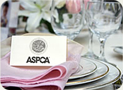 Donation To Charity As Wedding Gift : wedding-donation-left-table-setting.ashx